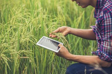 Aplicaciones para agricultura que te harán la vida más fácil